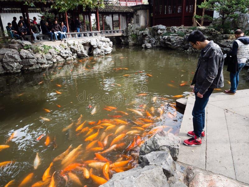 有金鱼的池塘在繁体中文庭院里 免版税图库摄影