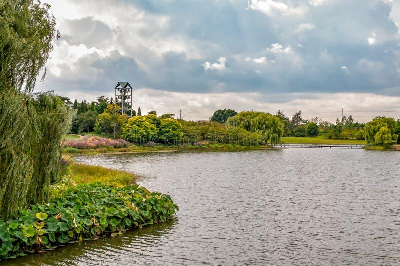 有钟琴钟楼的海岛在芝加哥植物园,格伦克,美国 免版税库存照片