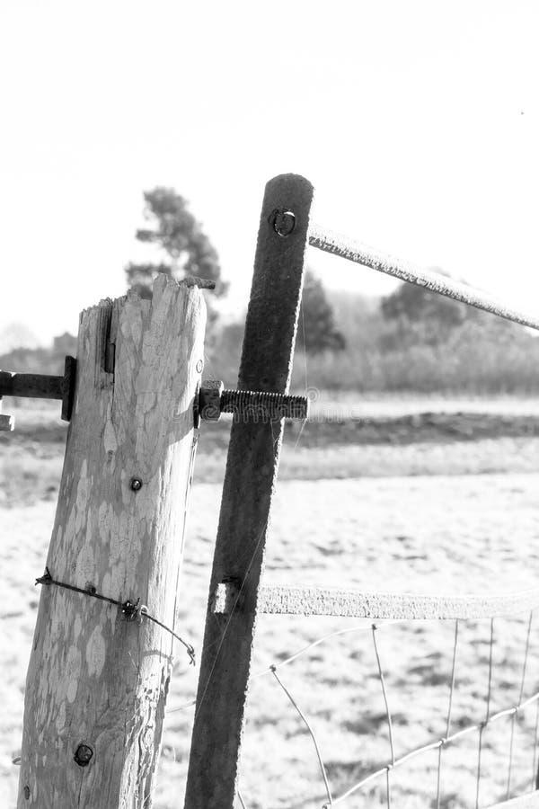 有铁丝网和生锈的铁门的被风化的木岗位 库存图片