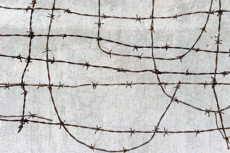 有铁丝网的混凝土墙 免版税库存照片