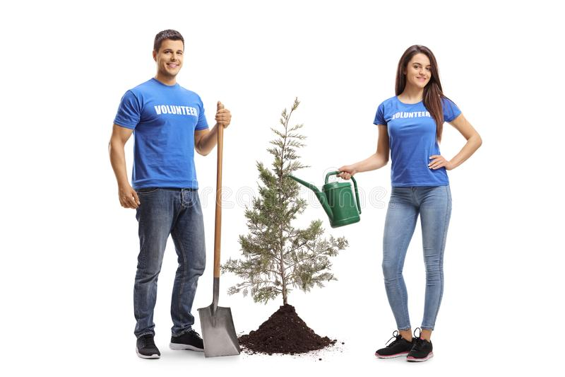 有铁锹和喷壶的年轻志愿者种植树的 图库摄影