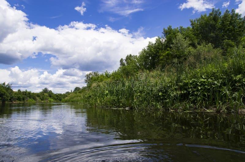 有银行的安静的河 库存照片