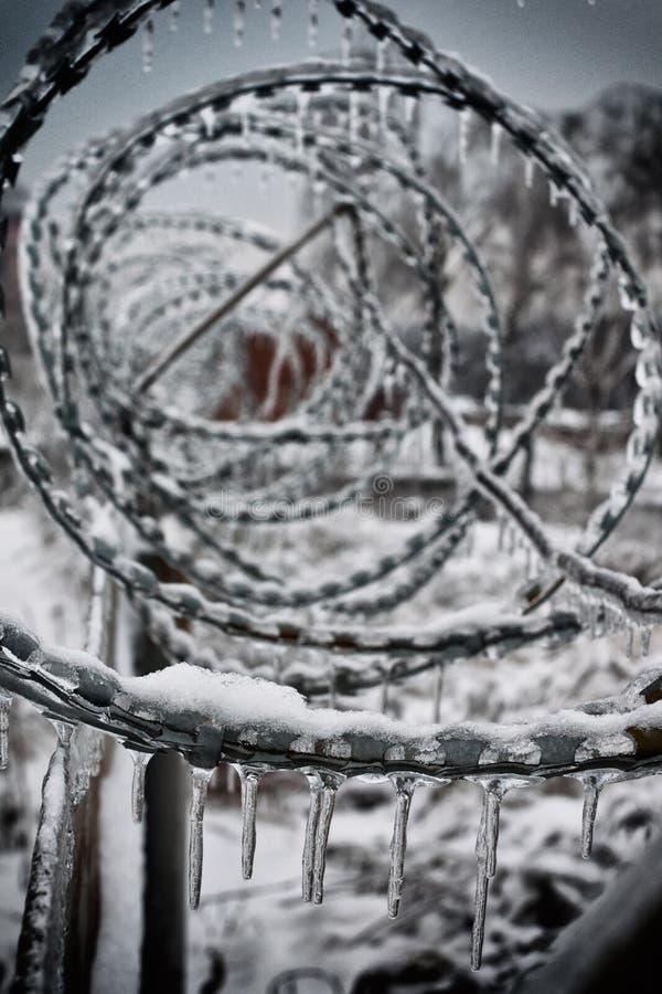 有锋利的铁丝网的篱芭 免版税库存图片