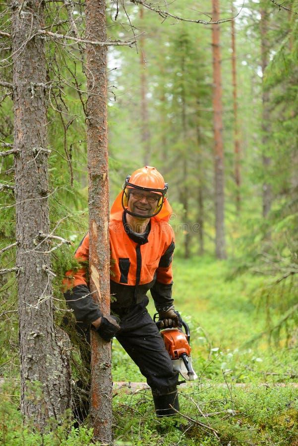有锯的人拿着一棵击倒的树 免版税库存图片