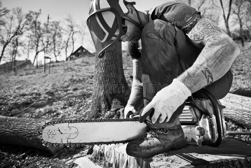 有锯的伐木工人 库存图片