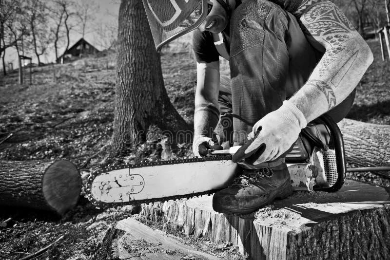 有锯的伐木工人 免版税库存图片