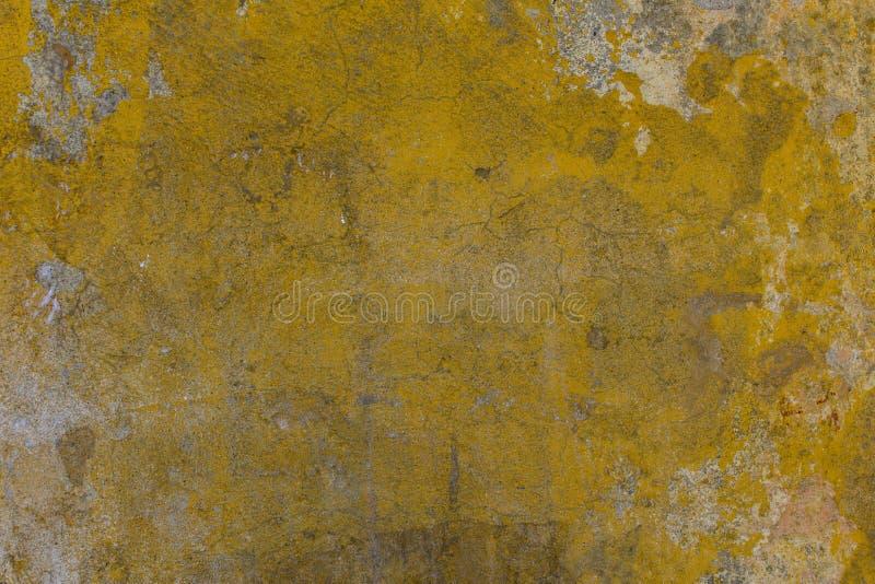 有镇压的,抓痕老肮脏的黄色混凝土墙,剥灰色和白色油漆和黑暗的模子污点 E 免版税库存照片