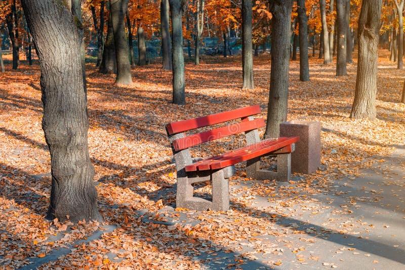 有长凳的美丽的风景胡同在树和金黄色的叶子醉汉之间在城市公园 在五颜六色的秋天的人行道 库存图片