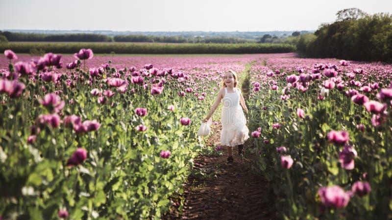 有长发的可爱的女孩在白色礼服偏僻走在淡紫色鸦片花田 免版税图库摄影