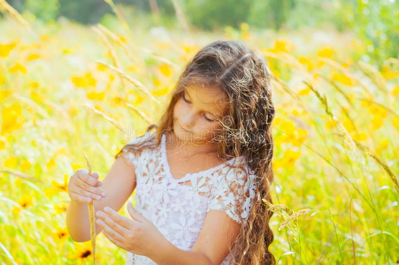 有长发的女孩在一件白色礼服在与花的一个领域高兴 免版税图库摄影