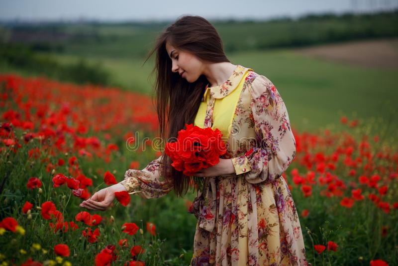 有长发的,接触快乐的年轻女人轻拍鸦片花,摆在花田,花背景 免版税图库摄影