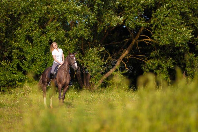 有长发跳跃在海湾马的骑师车手的年轻白肤金发的妇女 免版税库存照片