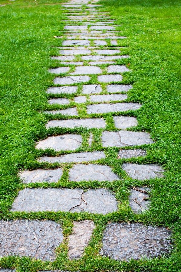 有草的石道路 库存照片