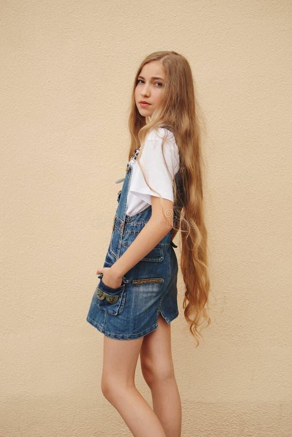 有长的头发的美丽的女孩 图库摄影
