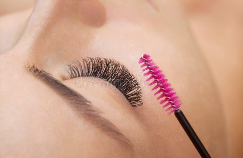 有长的睫毛的美丽的妇女在美容院 免版税库存图片