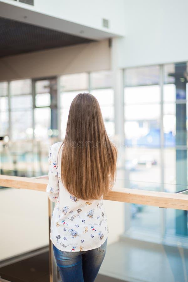有长的自然头发的美丽的棕色毛发的女孩 库存图片