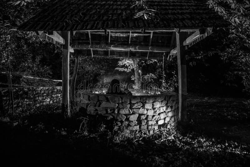 有长的黑色头发的一个可怕的女孩在一口阴沉的井站立 可怕万圣夜照片 在井外面的死的蛇神女孩攀登 库存图片
