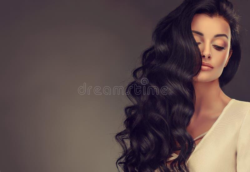 有长篇,发光和卷曲发型的黑发妇女 卷曲的头发 库存图片