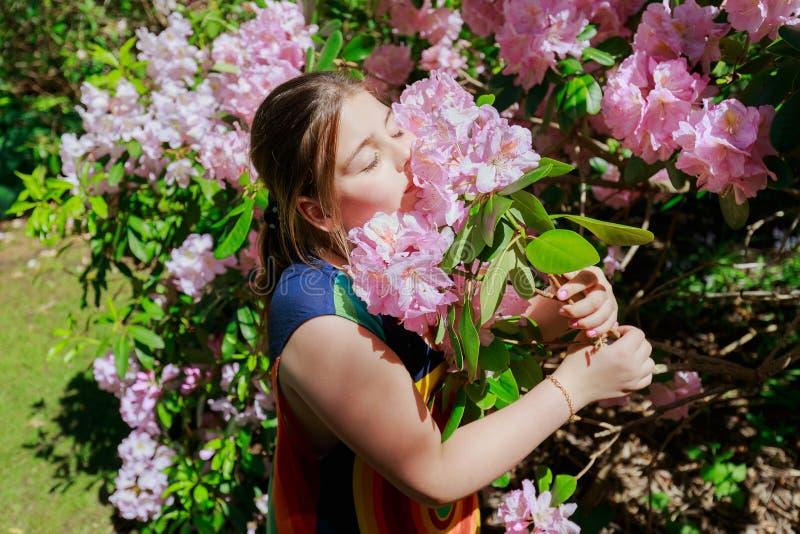 有闭合的眼睛的小女孩享受她的业余时间的在庭院,拥抱开花的树枝桃红色开花 库存照片