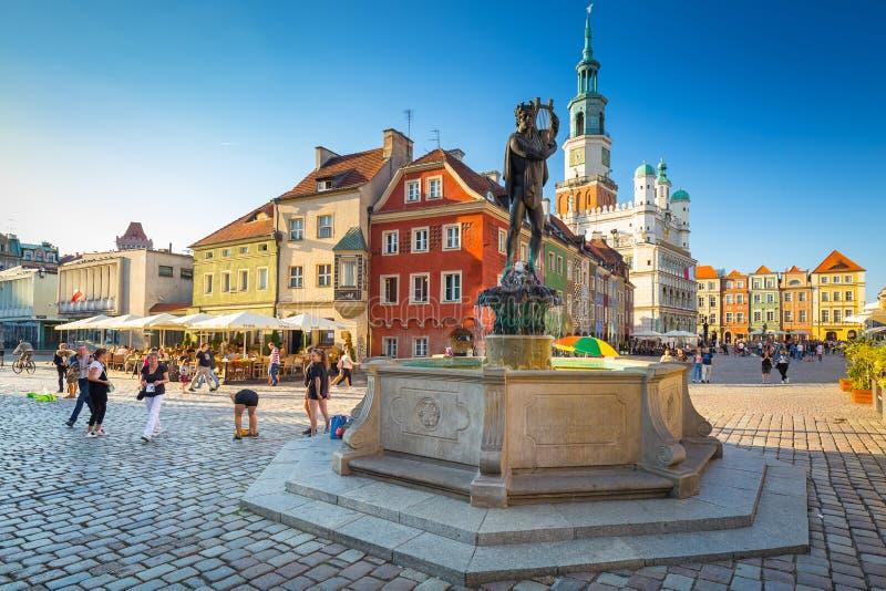 有阿波罗喷泉的老集市广场在波兹南,波兰老镇  免版税库存照片