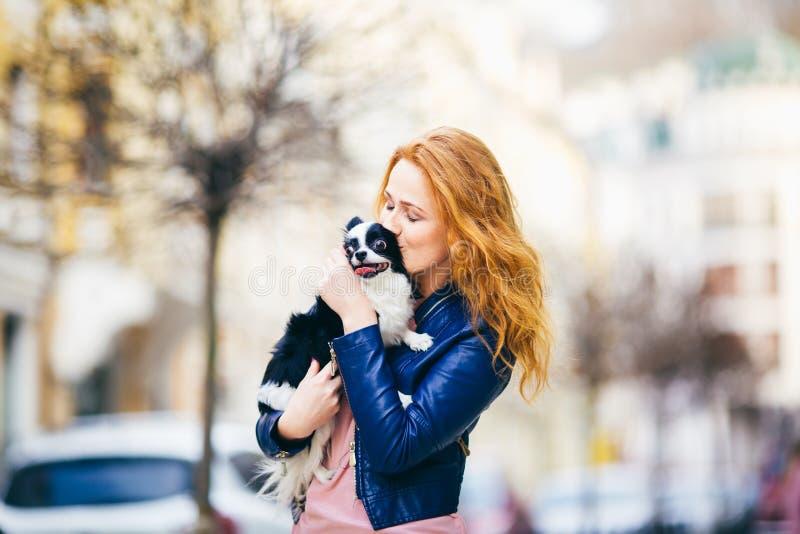 有雀斑的一名年轻红发白种人妇女举行和亲吻,拥抱奇瓦瓦狗品种黑白卷毛狗  女孩博士 免版税库存照片