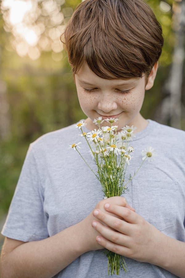 有雀斑的小孩在他的嗅到一朵雏菊花的面孔在草甸 库存图片