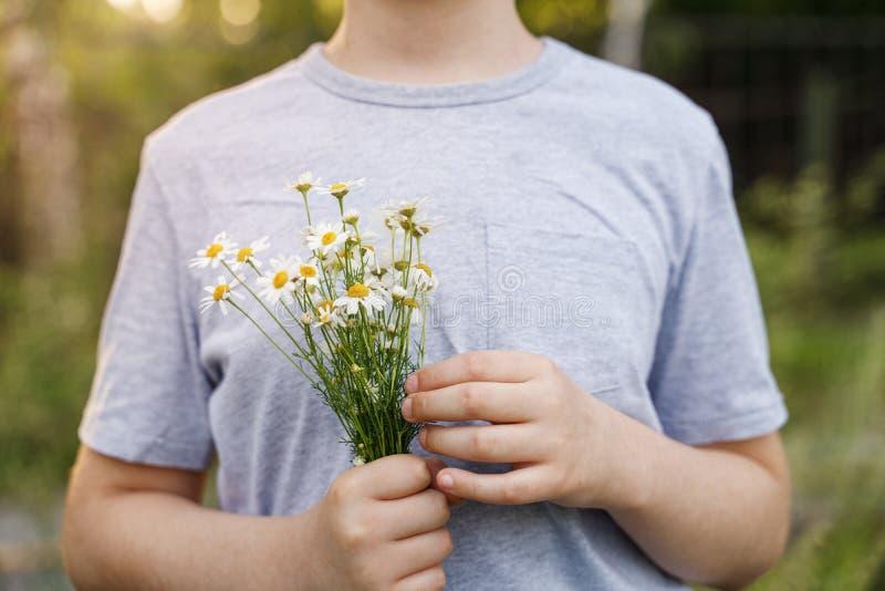有雏菊花的小孩在草甸 免版税库存照片