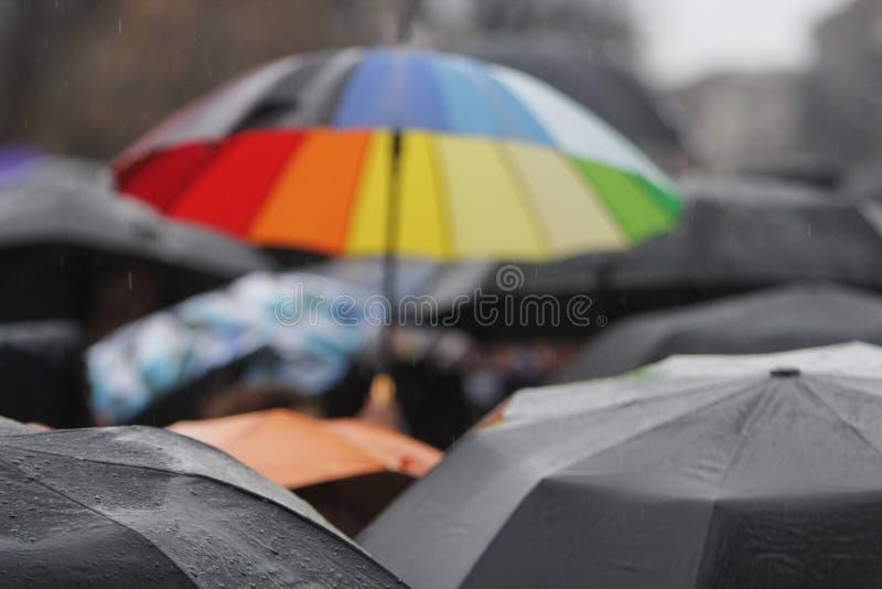 有雨下落的雨伞 库存照片