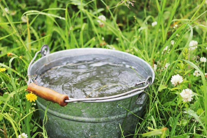 有雨水的桶 能下落秋天绿色吊在池水坑雨的叶子百合一如何看见水面 免版税库存图片