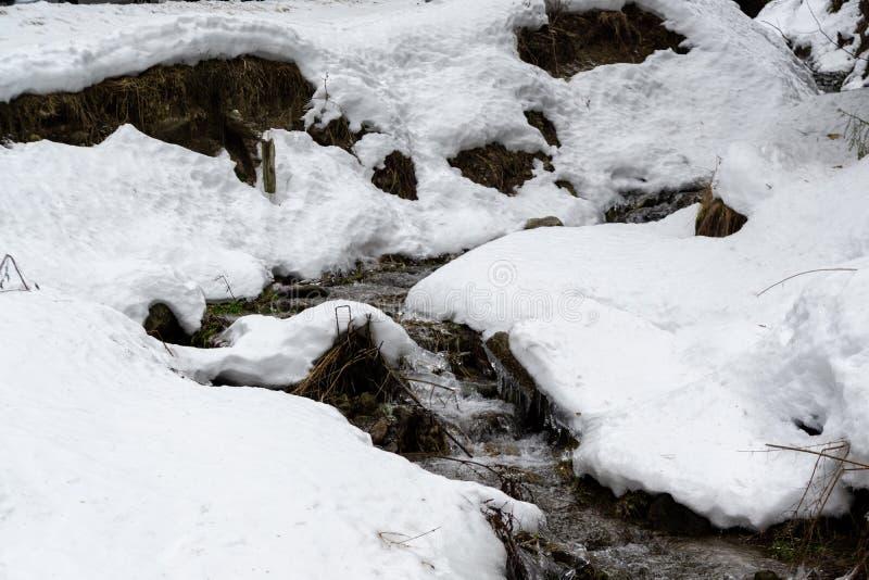有雪和冰盖的水小河的结冰的河 免版税图库摄影