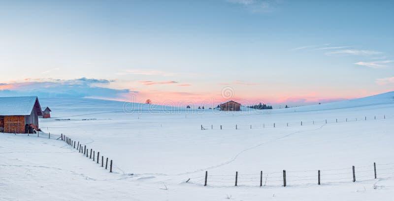 有雪的农村草甸在冬天 库存图片