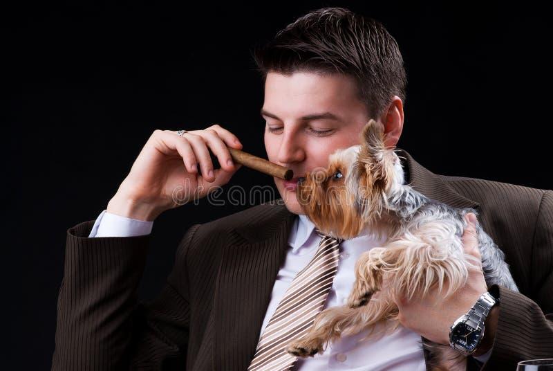 有雪茄和狗的新商人 库存图片