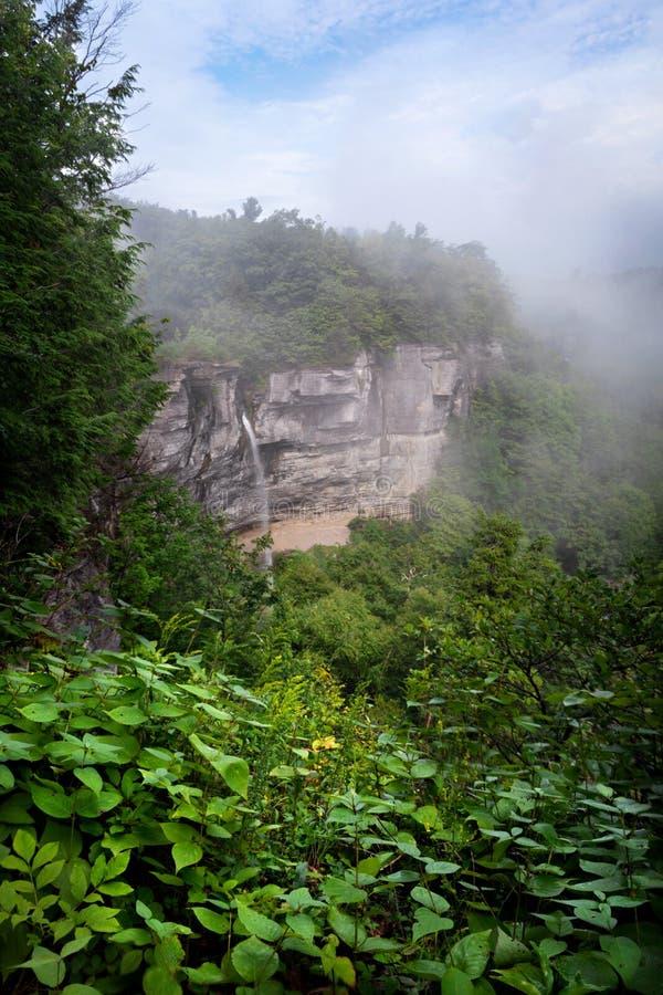 有雾俯视矿全部秋天撒切尔公园 免版税图库摄影