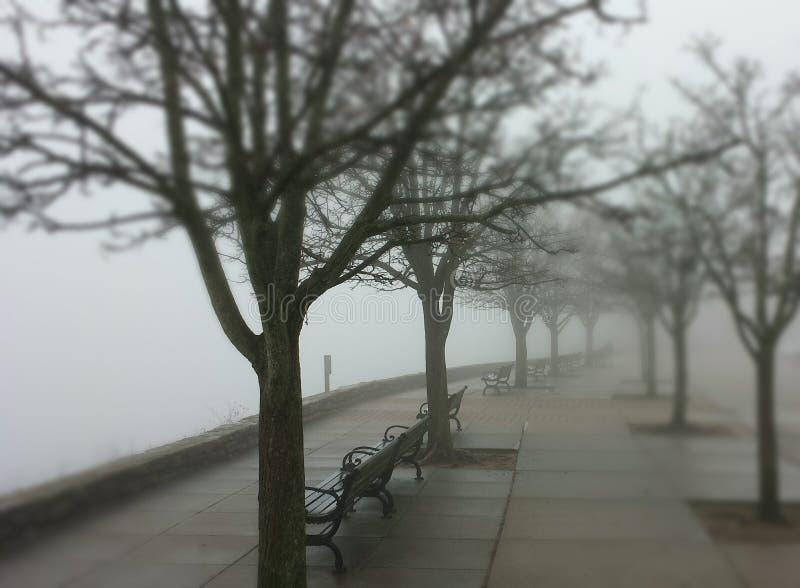 有雾俯视 库存图片