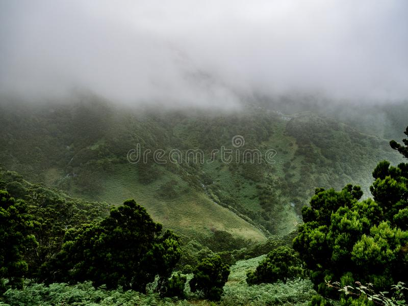 有雾和有薄雾的mountian风景的图象 免版税库存照片