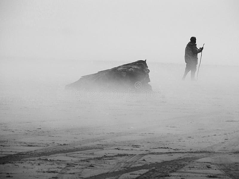 有雾海滩的日 免版税库存照片