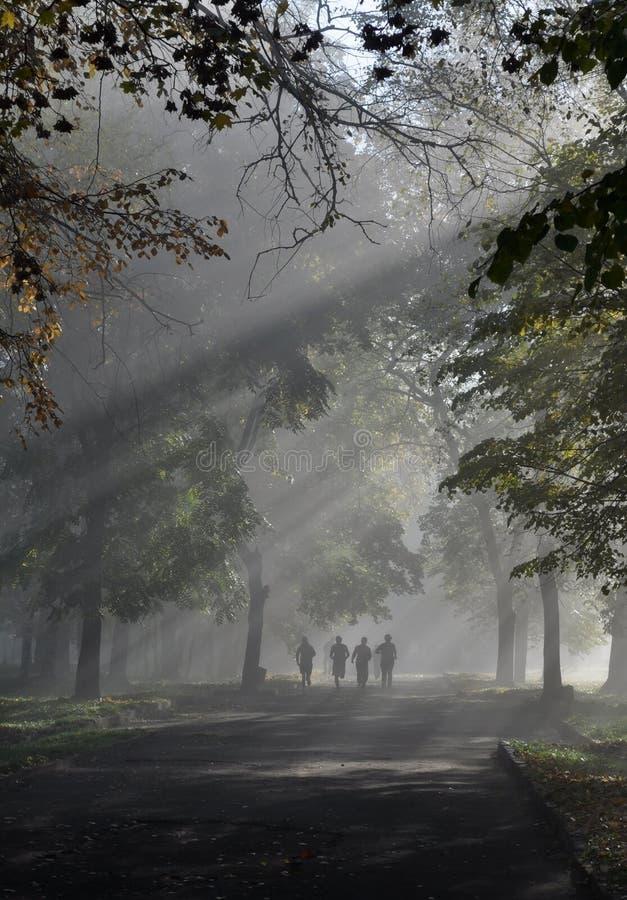 有雾的人路 免版税库存照片