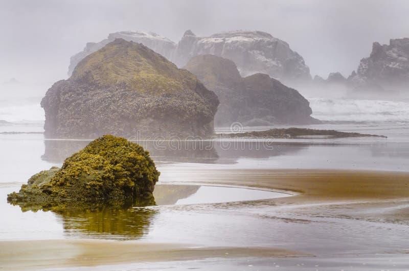 有雾的俄勒冈海岸 免版税库存图片