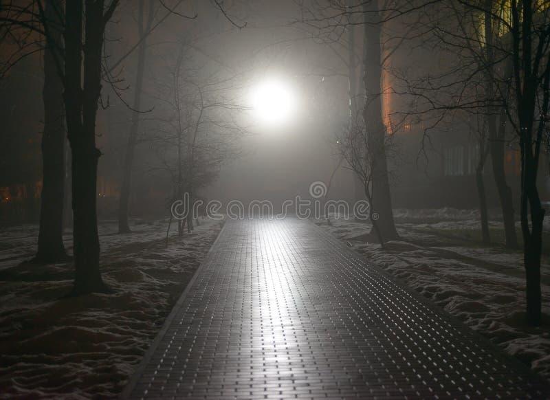 有雾的公园在晚上 图库摄影