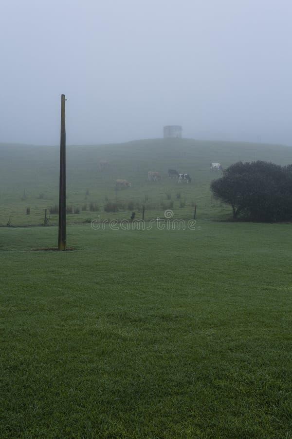 有雾的农村场面 库存图片