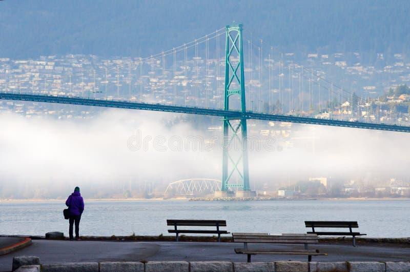 有雾的冬天在温哥华,有狮子门桥梁的不列颠哥伦比亚省 免版税图库摄影