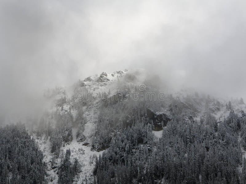 有雾的冬天山 雪和树盖的山腰 免版税库存照片