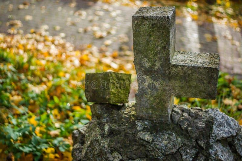 有雾的坟园在晚上 月光的老鬼的公墓通过树 免版税库存照片