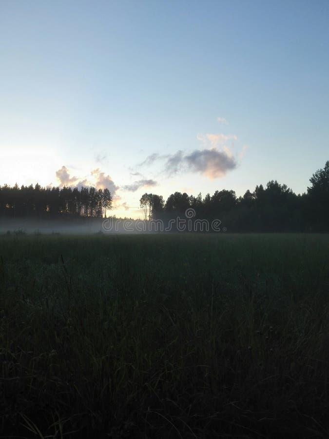 有雾的域 库存照片