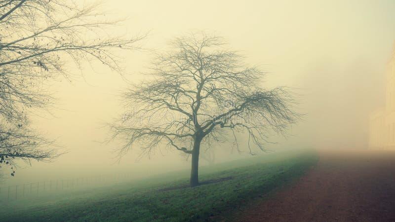 有雾的天在伦敦 免版税库存图片