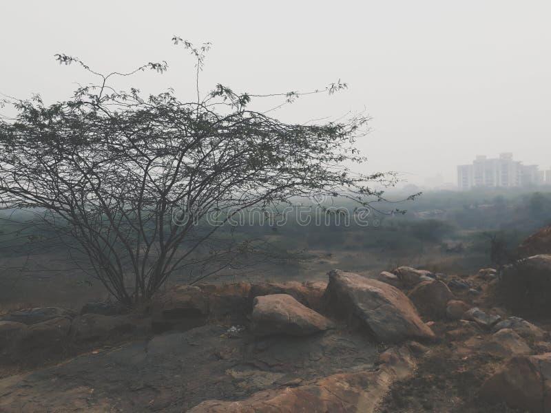 有雾的天气 免版税库存照片