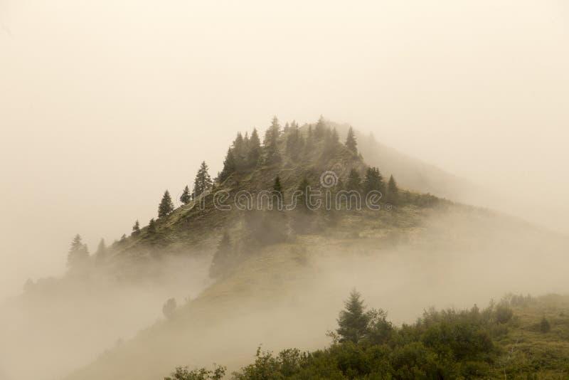 有雾的小山顶 免版税库存图片