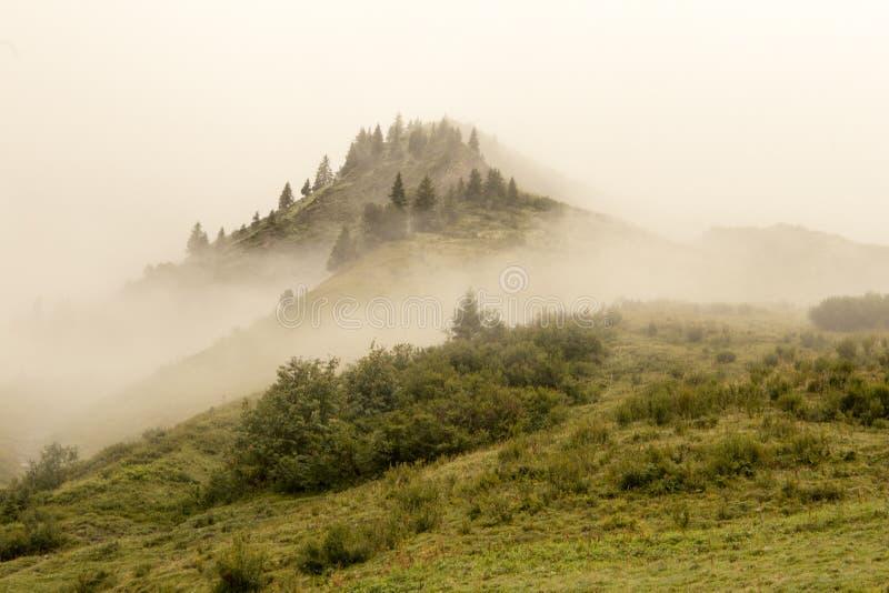 有雾的小山顶 免版税图库摄影
