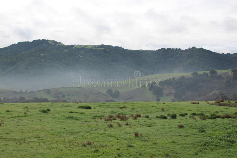 有雾的小山 免版税库存照片