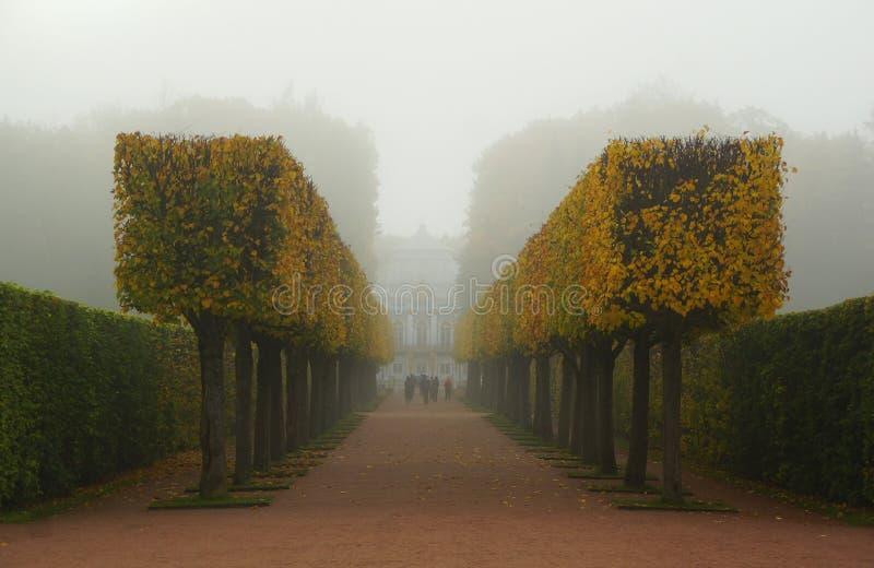 有雾的早晨在凯瑟琳公园 库存图片